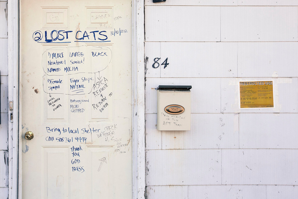. A series of messages relating to a resident\'s two cats lost during the storm surge of superstorm Sandy are scribbled on a door in the Staten Island borough neighborhood of Oakwood in New York November 28, 2012.  REUTERS/Lucas Jackson