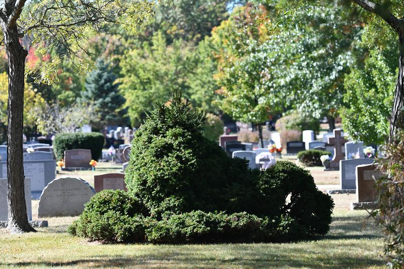 St-Joseph-Cemetery-Oct2019-129.jpg
