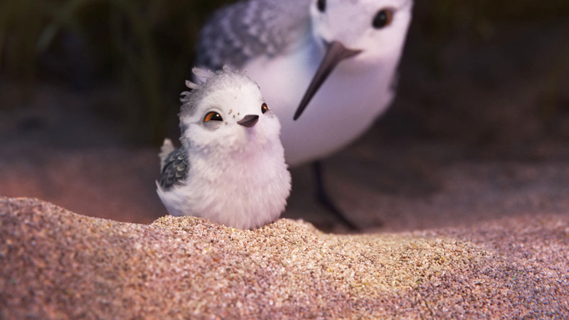 It's time to see the PIPER… adorable new character in new Disney-Pixar short