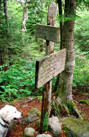 Mt. Wolf - Reel Brook/Kinsman Ridge Traverse (June 26)