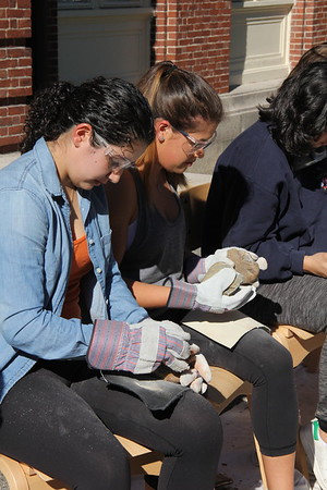 Students and Stone Tools: Human Origins 2017