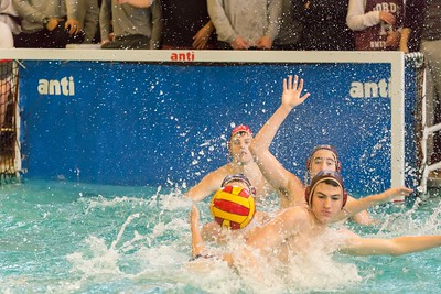 Haverford/EA Day Water Polo