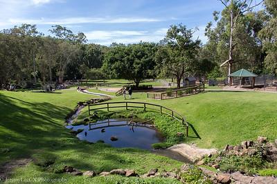 Day 3 - Currumbin Wildlife Sanctuary & Sunshine Coast