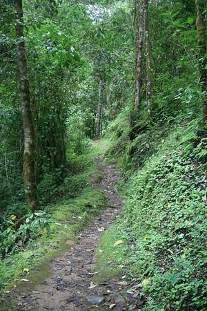Trogon Lodge Grounds, Landscapes, Trails