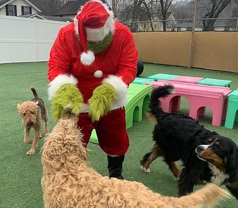 Santa/Grinch 2019