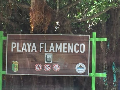 flamenco-beach.jpg