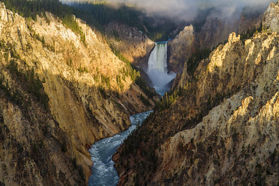 Yellowstone National Park  2011