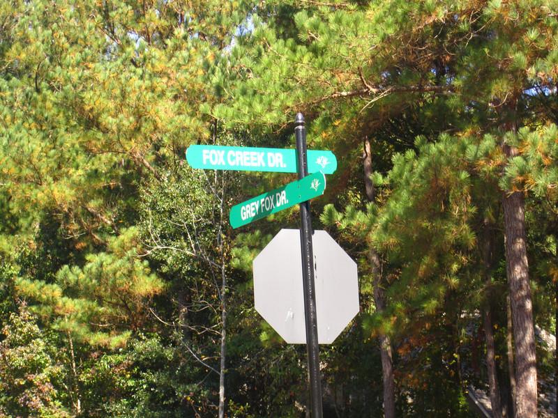 Fox Creek Cumming GA Homes (13).JPG