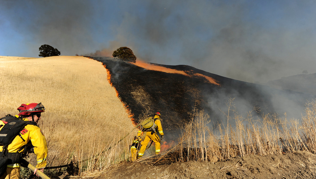 . Firefighters work the fire line which jumped a fire break up a canyon near Foothill Drive in Antioch, Calif., on Wednesday, June 24, 2015. (Susan Tripp Pollard/Bay Area News Group)
