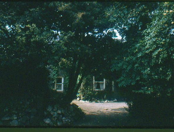19730054.jpg
