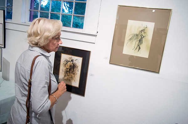 09/06/19 Wesley Bunnell | StaffrrThe Art League of New Britain held an opening show for artist Ned Lomerson on Friday September 6, 2019. A visitor to the show looks over works by special guest artist Rae Robinson.