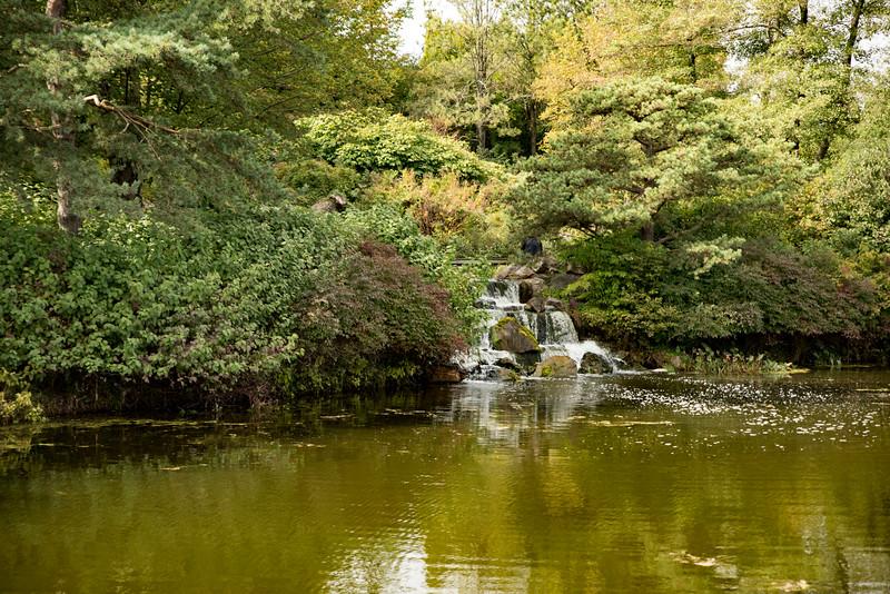 Chicago Botanic Garden 109.jpg