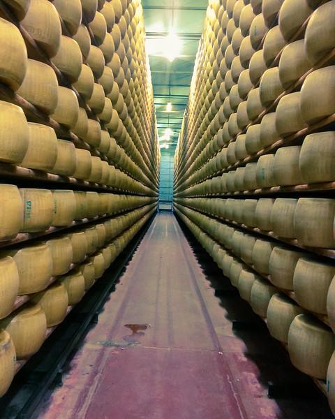 cheese shelves 2.jpg