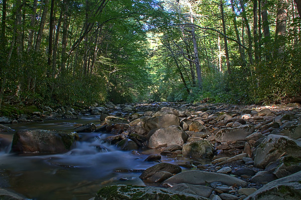 Great Smoky Mountains National Park 8/2014