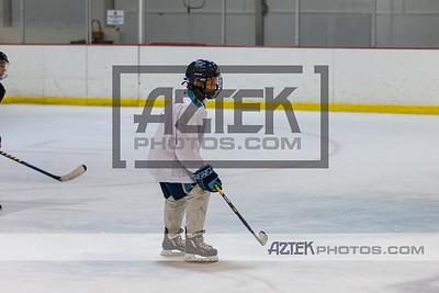Cross Island Hockey Camp 7/28/21