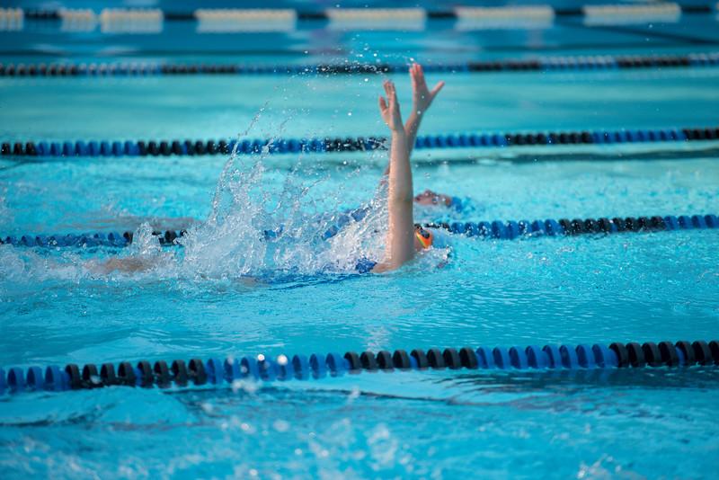 lcs_swimming_kevkramerphoto-343.jpg