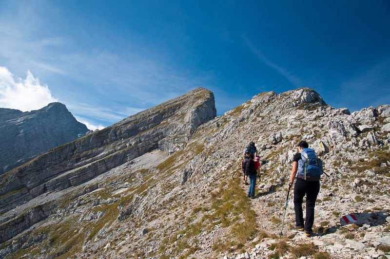 Planspitze (Bildmitte), 2.117m
