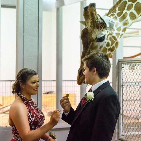 2018_KSMetz_April14_SHS PromNIKON D5_8018.jpg