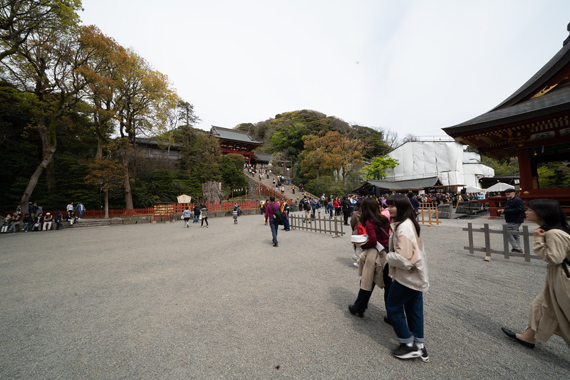 20190411-JapanTour-4251.jpg