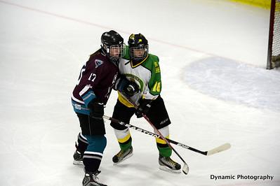 Okotoks Minor Hockey 2012/2013
