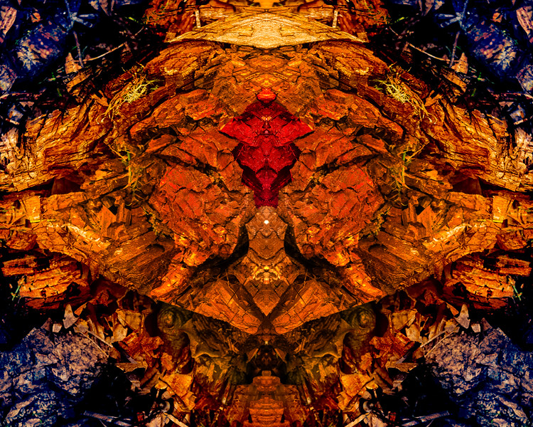 Lightening Tree Mandala 1