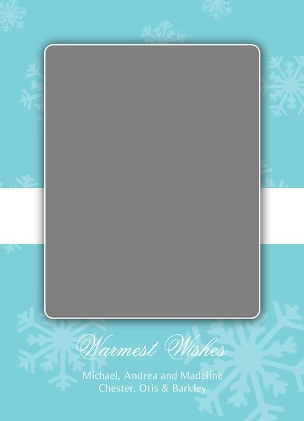 Falling Snow_5x7 2-Sided Card_01.jpg