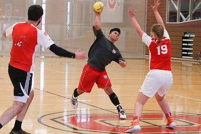 2017 Arnold Handball Showcase