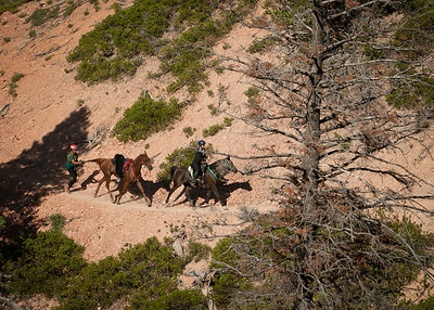 Rush Canyon Day 3