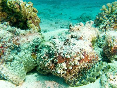 20130604 Dive, Small Crack