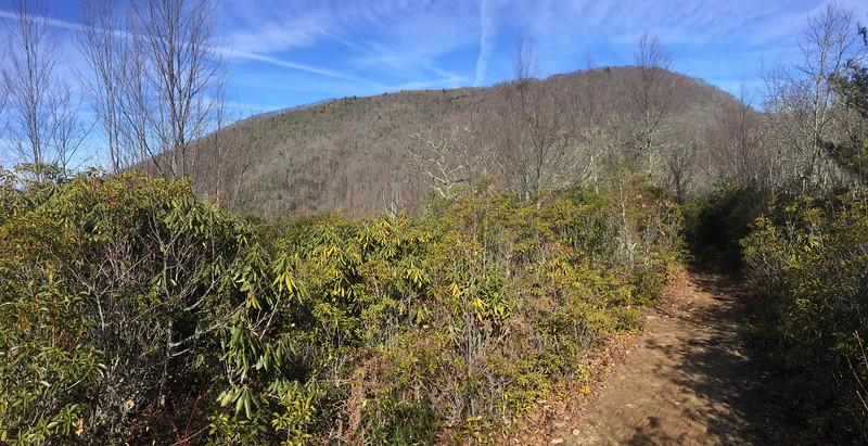 West Fork Trail - 5,000'