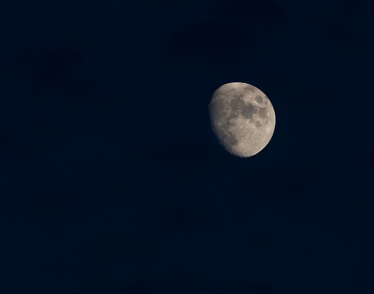 Moon 7-21-10b.jpg