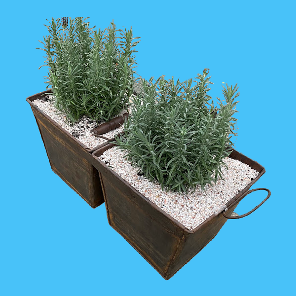 Mobile Garden _ Double Bucket Planter by Decorative Salvage.png