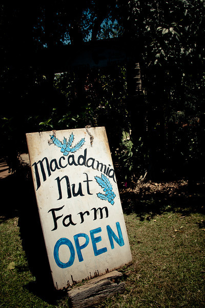Macadamia Nut Sign.jpg