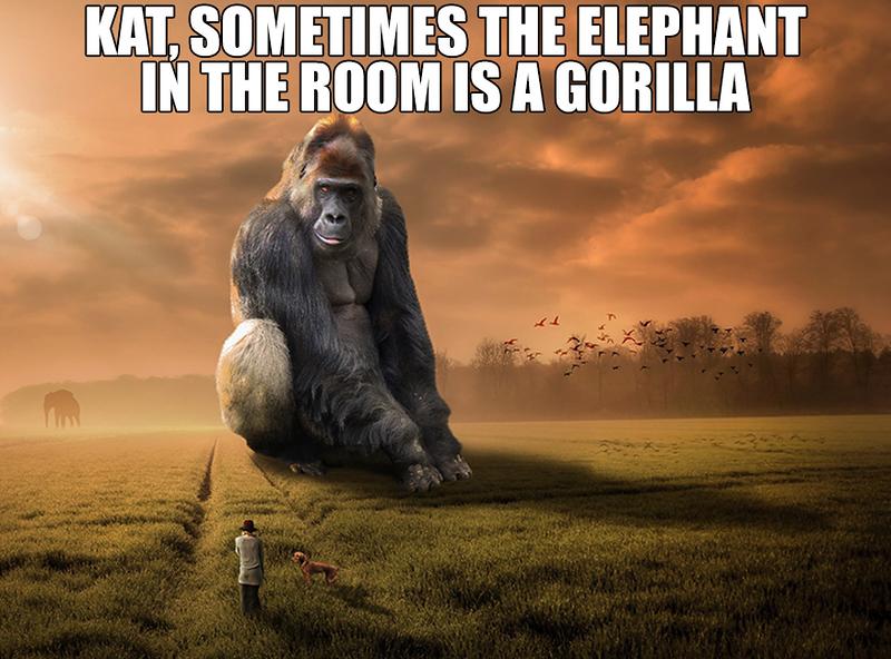 Gorilla In The Room.jpg