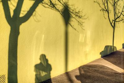 Self - Shadow