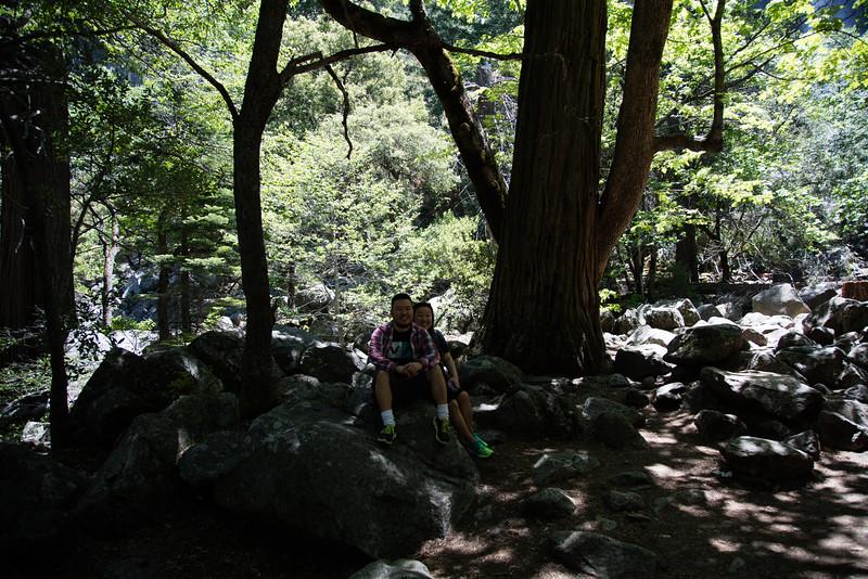 Yosemite_2016_Park-40.jpg