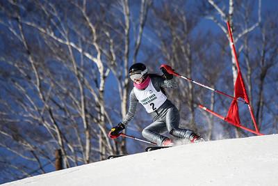 2012-2013 Ski Team