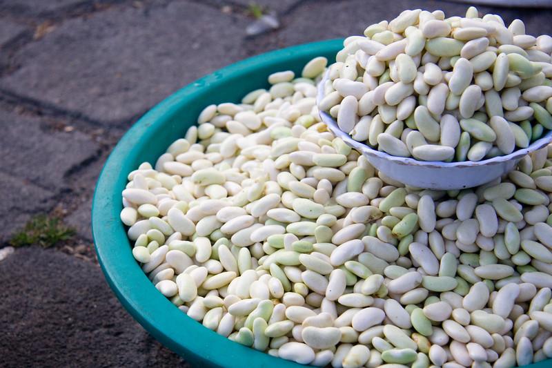 beans_4890998254_o.jpg