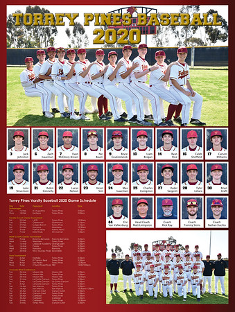 Baseball poster 2020