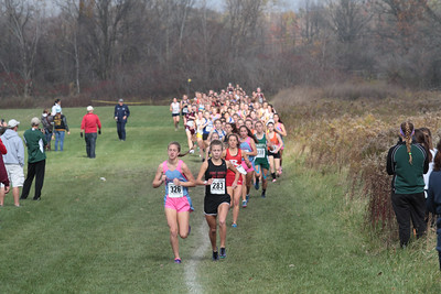 Girls - 2014 MHSAA XC LP Regional 9-1