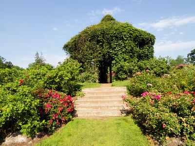 Elizabeth Park Rose Garden_June 2012