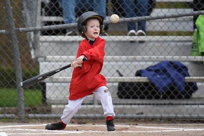 ELL 2017 - AA Cardinals