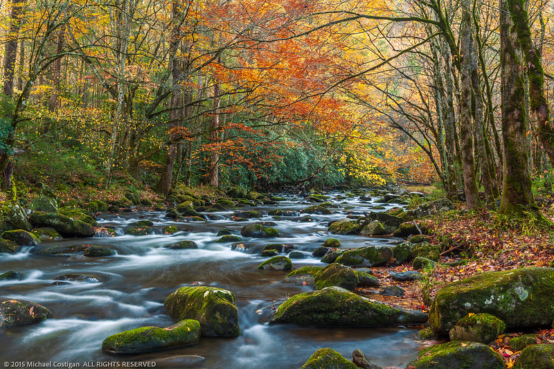 Fall Colors along Middle Prong of the Little River