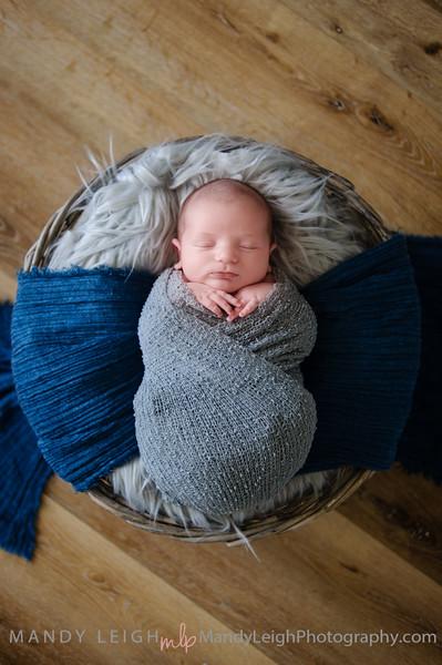 Grayson Roth Newborn
