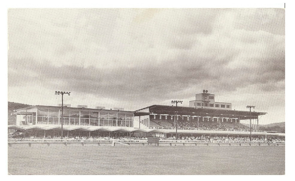 Description of . The grandstand, where spectators would watch the races. (from the Hinsdale Historic Society)