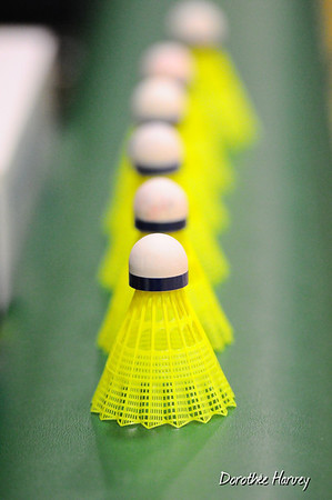 Badminton FXG Février 2013
