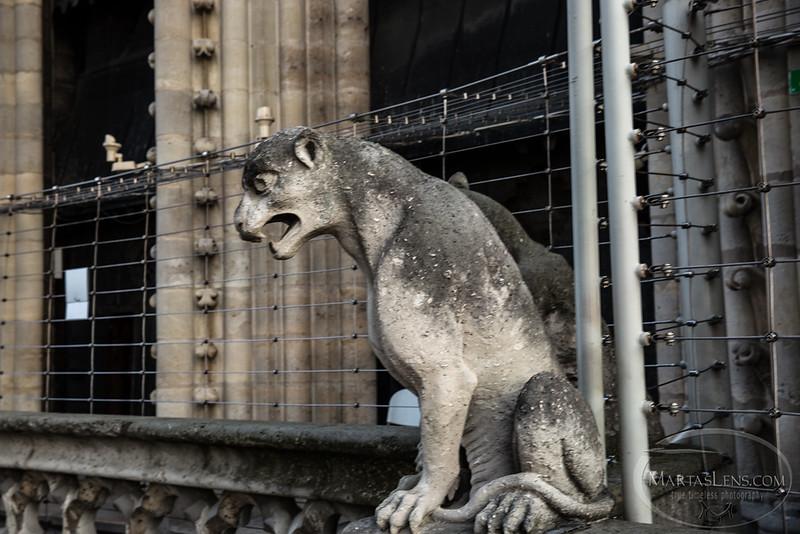 Notre Dame, Paris-22.jpg