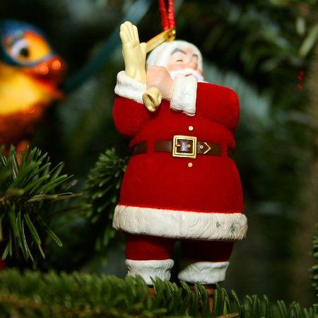 Christmas 2004 - Ft Myers FL