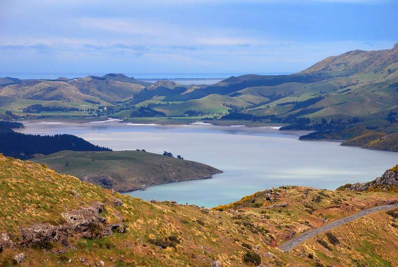 NZ-19.jpg