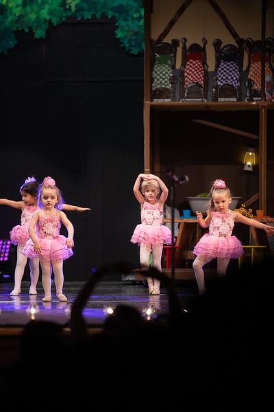 Dance Productions Recital 2019-416.jpg
